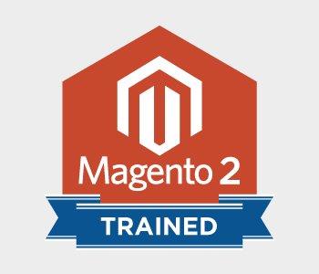 Magento 2 Theme Development Company