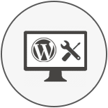 Hire Wordpress Development Services USA