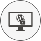 24/7 WordPress Security Services