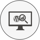 WordPress SEO Expert