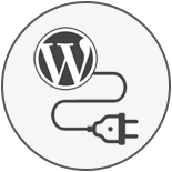 Custom WordPress Plugin Development Services