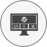 Wordpress Theme Development Services