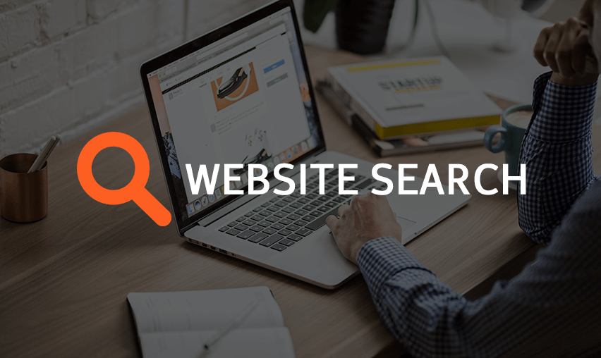 Importance of Search Functionality for eCommerce Website