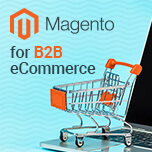 Why Magento is Best for B2B Ecommerce Businesses