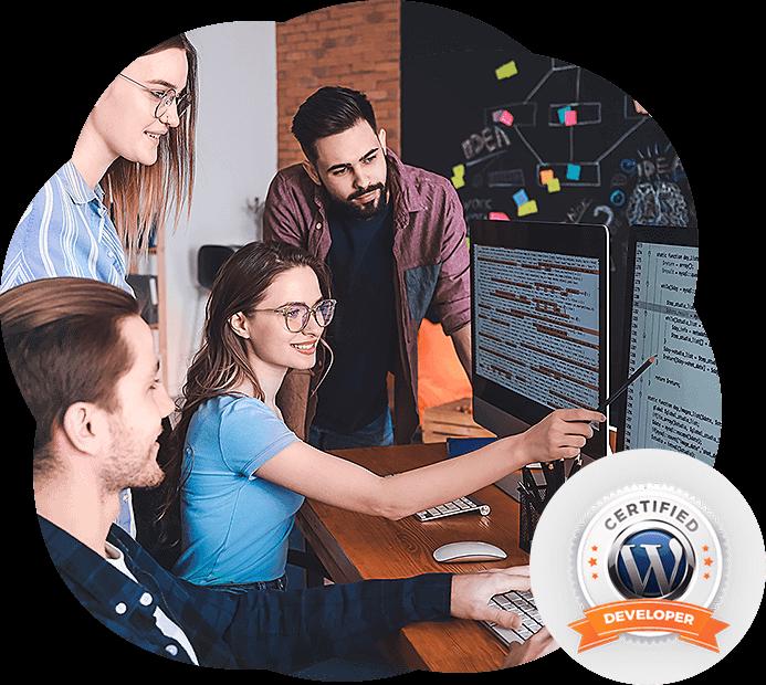 wordpress developer usa